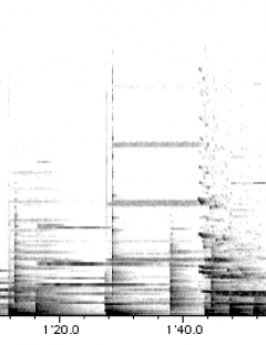 [novembre 1992]