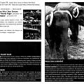 Montage des pages 6 et 7 du programme de «Nous perçons les oreilles» dans le cadre de l'événement «Collection de timbres»