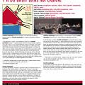 Y'a du bruit dans ma cabane: document de présentation [December 2008]