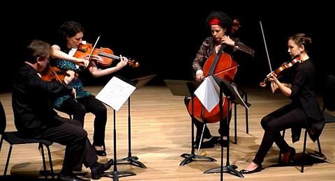 Bozzini Quartet