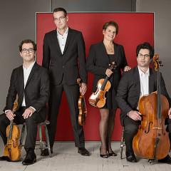 Quatuor Molinari [Photo: Élizabeth Delage, Montréal (Québec)]