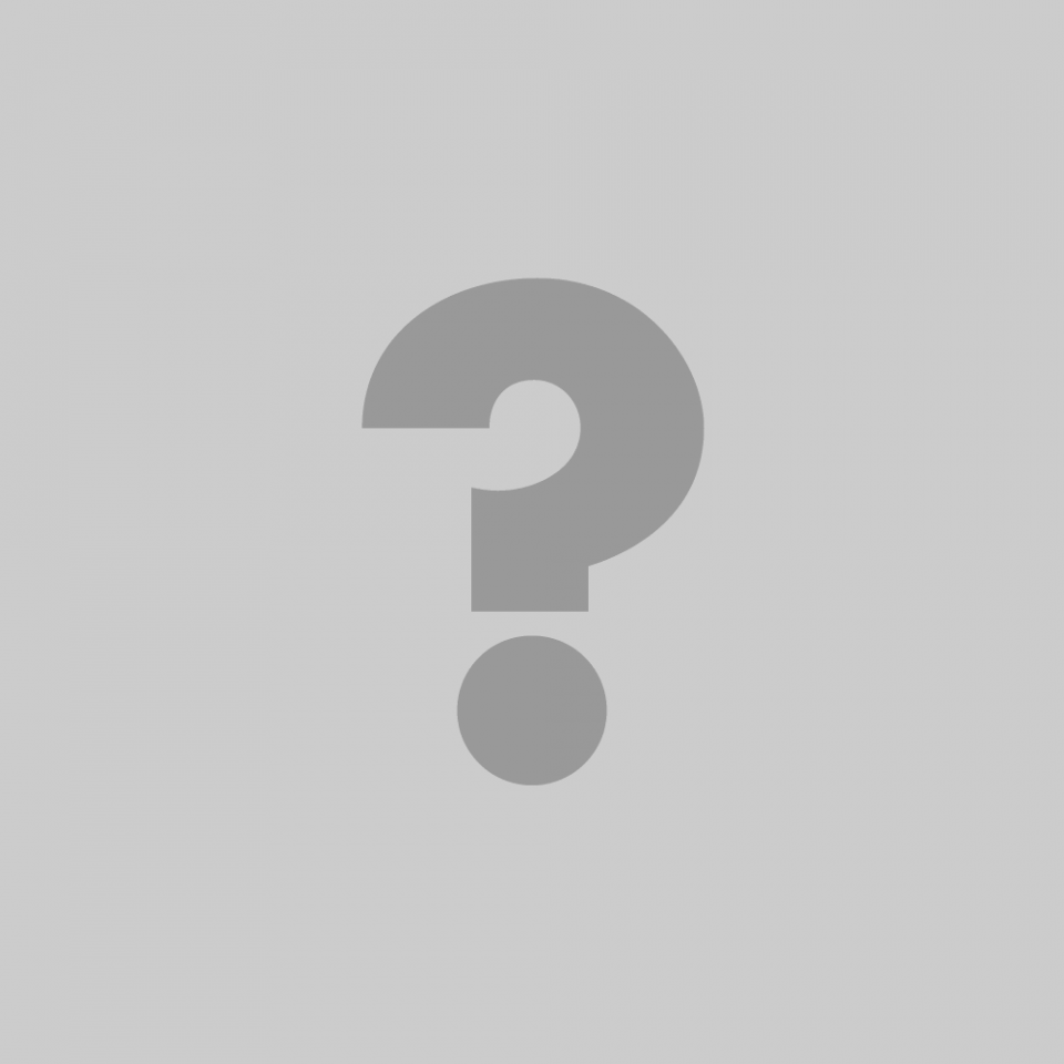 La Fanfare Pourpour section basse, dans l'ordre habituelle: Jacques Duguay, Pierre Tanguay, Christine Lajeunesse, Nicolas Letarte-Bersianik, Normand Guilbeault [Photo: Katia Gosselin, février 2010]
